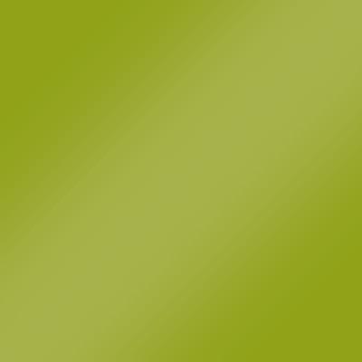 Grün Hochglanz Lack - L20